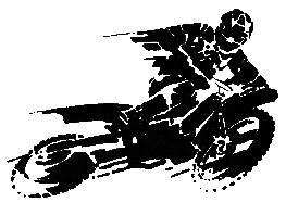 Geländesport-Nordost logo